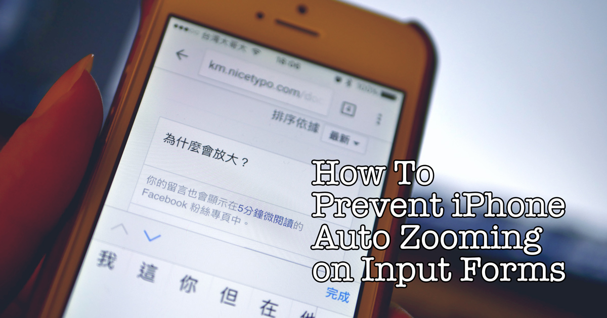 How to prevent iPhone auto zooming on input form